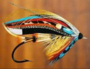 Picture of the_black_and_gold_tied_by_peter_dunne_fly_tying_ireland.jpg